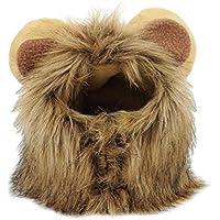 Perücke für Haustier, Katze, Hund, Nachbildung einer Löwenmähne mit Ohren, Mütze, Winterkostüm