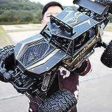 Mopoq Gran Control Remoto Vehículo Todoterreno Profesional Alta Velocidad Tracción en Las Cuatro Ruedas Escalada Coche Carga Niños RA Control Remoto Coche Toy Boy (Color : Black)