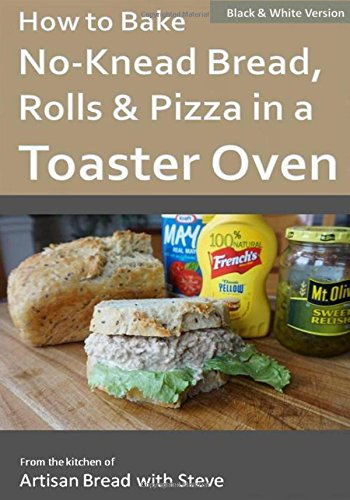 how-to-bake-no-knead-bread-rolls-pizza-in-a-toaster-oven-bw-from-the-kitchen-of-artisan-bread-with-s