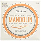 Mandolin Strings Review and Comparison