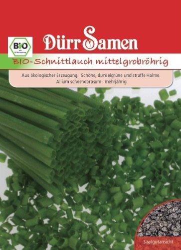 Kräutersamen – Bio-Schnittlauch mittelgrobröhrig von Dürr-Samen