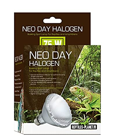 Reptiles-Planet Neo Day Halogen Basking Lamp for Reptiles, 75 W