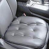 Big Ant Auto Sitzauflage Auto Sitzkissen Autositzbezug Auto Vordersitz Kissen...