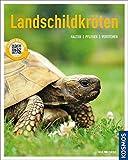 Landschildkröten: halten, pflegen, verstehen