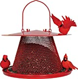 Bird Feeder For Cardinals