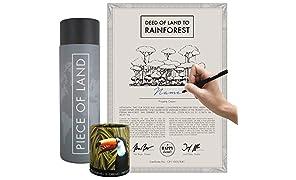 happylandgifts Parent-Rainforest-DE, Basique., Basic