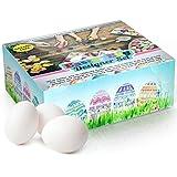 Bemale dein eigenes, hochwertiges Ostereier Designerset – Matte Oberfläche, sodass Farbe und Kunstwerke besser halten. (Packung mit 25 Eiern)