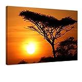 Bilderdepot24 Kunstdruck - Akazienbaum im Sonnenuntergang, Tanzania Serengeti Afrika - Bild auf Leinwand - 50x40 cm - Leinwandbilder - Bilder als Leinwanddruck - Wandbild