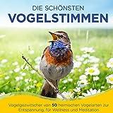 Die schönsten Vogelstimmen - Vogelgezwitscher von 50 heimischen Vogelarten zur Entspannung, für Wellness und Meditation - Der Klang aus der Natur - Folge 1