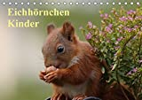Eichhörnchen Kinder (Tischkalender 2018 DIN A5 quer): Wunderschöne Großaufnahmen von jungen verspielten Eichhörnchen (Monatskalender, 14 Seiten ) (CALVENDO Tiere)