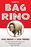 How to Bag a RINO: The Whiz Kids Who Brought Down House Majority Leader Eric Cantor (English Edition)