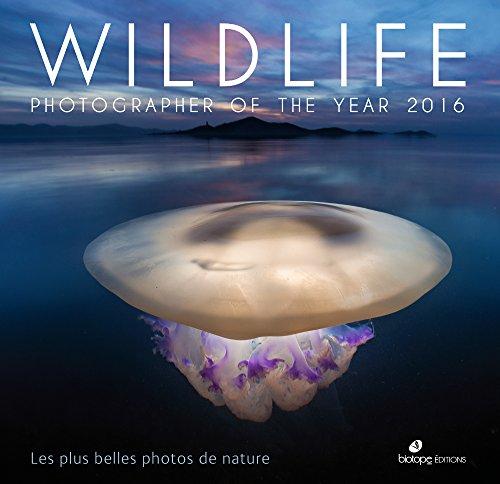 wildlife-photographer-of-the-year-2016-les-plus-belles-photos-de-nature