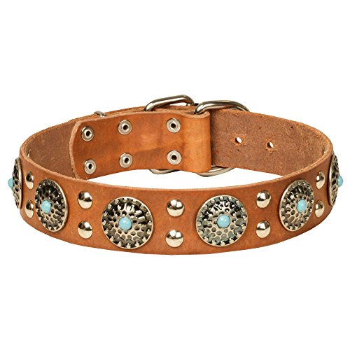 34-inch-tan-leather-dog-collar-with-silver-like-decorations-ace-style-1-1-2-inch-40-mm-wide
