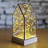 Brennholz-Silber-Blumen-fester Glas-Glas-Nachtlicht LED Dekoration Tabellen-Lampe Geburtstags-Geschenk