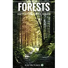 Forests: Just Pictures! Coffee Table Picture Book Series (English Edition)