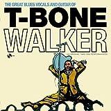 The Great Blues Vocals And Guitar Of + 4 Bonus (180g) [Vinyl LP]