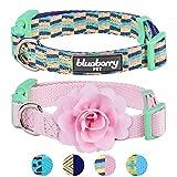 Blueberry Pet Doppelpack Mix & Match Schöne Stücke Designer Hundehalsband mit Blumen-Deko, S