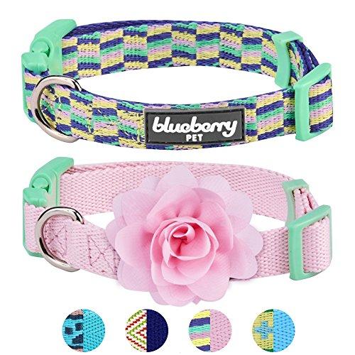Mit Designs Snuggies (Blueberry Pet Doppelpack Mix & Match Schöne Stücke Designer Hundehalsband mit Blumen-Deko, S)