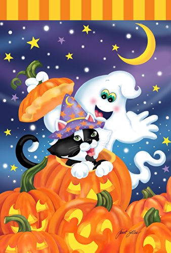 Toland Home Garten-Hexe, Kätzchen, 71,1 x 101,6 cm, dekorative Bunte Halloween-Jack-o-Lantern Kürbis Geister Katze Haus Flagge (Lanterns Halloween-jack O Niedliche)