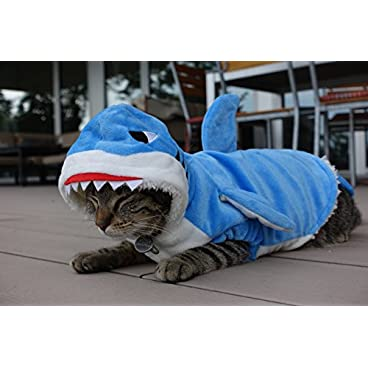 Miaustore Shark Costume for Cats – Lots of Fun, 1 Size Fits All, Soft Strap, Vibrant Colours