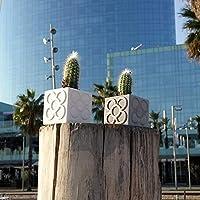 Mini Maceta cúbica Panots, mini jarrón, mini vase, mini florero, resina cerámica, colores personalizados, diseño exclusivo, barcelona
