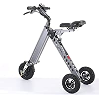 Topmate Mini Vélo électrique Tricycle Intelligent à la mode Trottinette Tricycle électrique Vélo électrique pliable et portable(gris, vert)