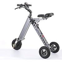 TopMate Mini Vélo électrique Tricycle Intelligent à la Mode Trottinette Tricycle électrique Vélo électrique Pliable Portable(Gris, Vert, Or)