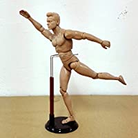 Earlywish Human Drawing Model Anatomy Body Muscle Artist Art Figure Display Craft 12""