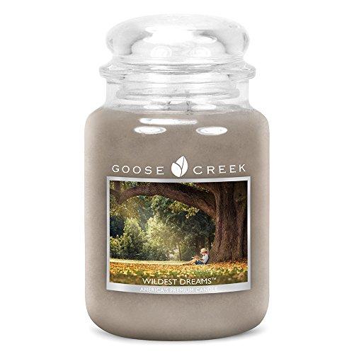 Goose Creek Kerzen-Glas 24 Unzen - Wildest Dreams -