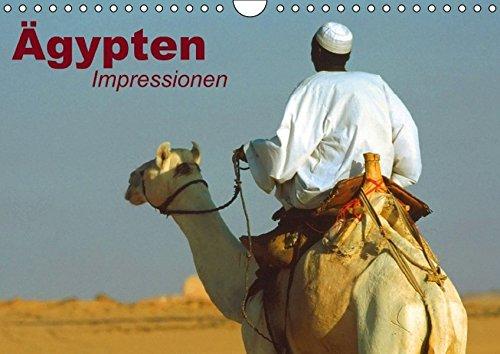 Ägypten • Impressionen (Wandkalender immerwährend DIN A4 quer): Das mystische Land der Pharaonen (Monatskalender, 14 Seiten) (CALVENDO Orte) [Kalender] [Jan 20, 2014] Stanzer, Elisabeth -