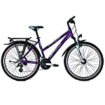 Raleigh Damen Funmax Fahrrad, Darkscarlet, 45