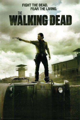 Hot Stuff Enterprise Z193-24x36-NA The Walking Dead B Poster, 24 x 36 by Hot Stuff Enterprise (24x36 Walking Dead-poster)