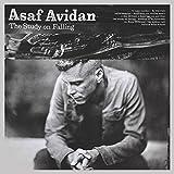 The study on falling | Avidan, Asaf. Auteur