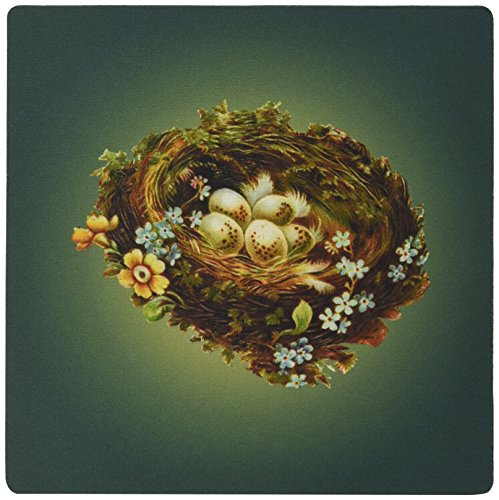 3drose LLC 20,3x 20,3x 0,6cm Maus Pad, viktorianisches Birds Nest mit gesprenkelten Eiern und Tiny blau Blumen–(MP _ 171356_ 1)