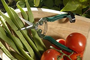 Fruit & Veg Snip Shears by Burgon & Ball