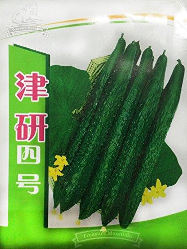 5 packs originaux, 60 graines / paquet, Jinyan No.4 haut rendement à long vert foncé Concombres, légumes bio