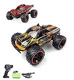 Ferngesteuertes Auto, 1:16 Skala 2WD RC Auto Off Road Buggy, 2.4 Ghz Radio Control Geländewagen Spielzeug Fahrzeug für Kinder Erwachsene im Drinnen und draußen
