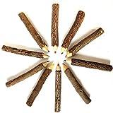 nuolux Baum-Zweig, von 9–10cm Farbe Bleistifte Art Zeichnung Öl Bleistift Basis Set 3.54 * 0.39 * 0.39 inch 12pcs