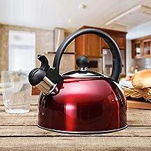 GAOJIAN Acero inoxidable 2.5L hervidor de agua cocina de inducción que acampa calderas estufa silbando