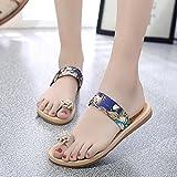 Dragon868 Women Fashion Summer Sandals, Flat Flip Flops Flower Decor Bohemia Shoes (40 EU, Blue)