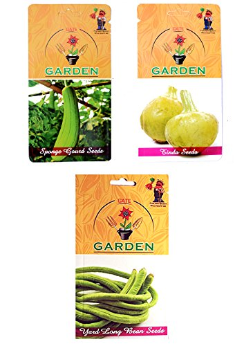 Gate Garden Gate Garden Vegetable Seed Summer Sowing
