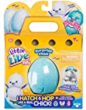 Best Chicks - Little Live Pets 28427 Surprise Chick Figure Review