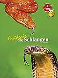 Entdecke die Schlangen (Entdecke - Die Reihe mit der Eule / Kindersachbuchreihe, Band 1)