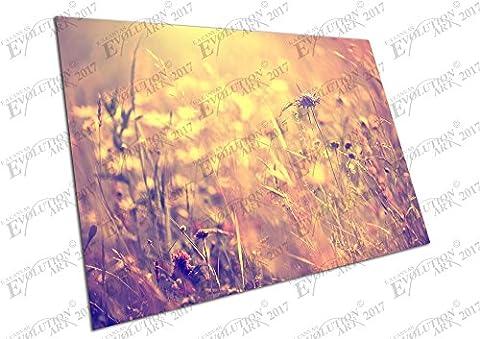Impression sur toile Sun Kissed vintage Meadow Fleurs sauvages - A0 Print Only