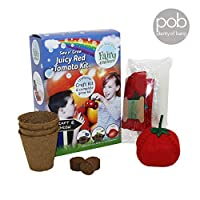 Sew and Grow Juicy Red Tomato Kit, Childrens Grow Your Own, Fairy Garden, Creativity for kids, Figurine, Arts and Crafts