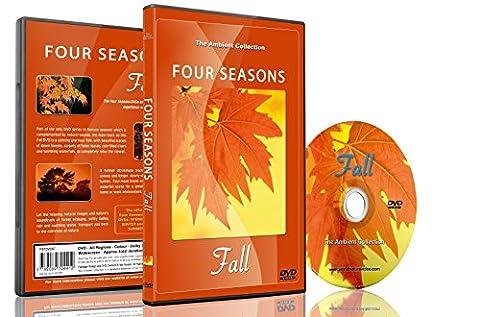 Natur DVD - Vier Jahreszeiten - Herbst mit natürlichen Klängen (Collection 4 Dvd-set)