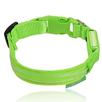 Illumiseen Led-hundehalsband In 6 Größen 6 Farben - Größe Xs Grün 0