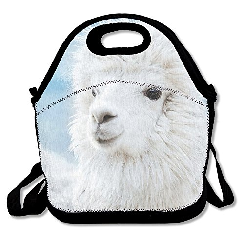 Reusable Picnic Lunch Bags Lunch Tote Cute Llama Lunch Box For Men Women Adults Kids Toddler Nurses