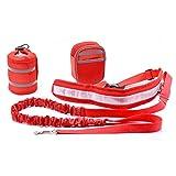 Pixnor Hands Free Leine Läufer Haustiere versenkbare Hund Hundeleine mit 2 Taille Packtaschen für laufen, Wandern, Joggen, Wandern, Radfahren (rot)