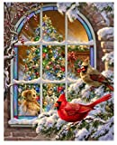 Pintura Digital Por Números Ventana Navideña Pájaros Floral Pintura Acrílica Arte Moderno De La Pared Pintura Inicio Hotel Deco Oferta Sin Marco 40X50CM